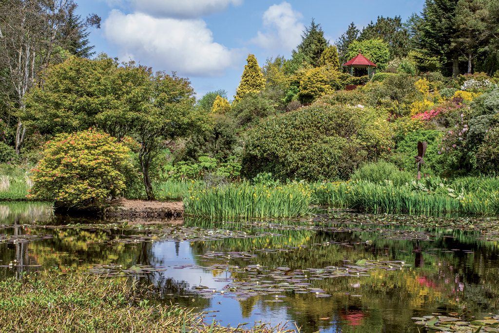 Late Summer over the Loch at Glenwhan Gardens