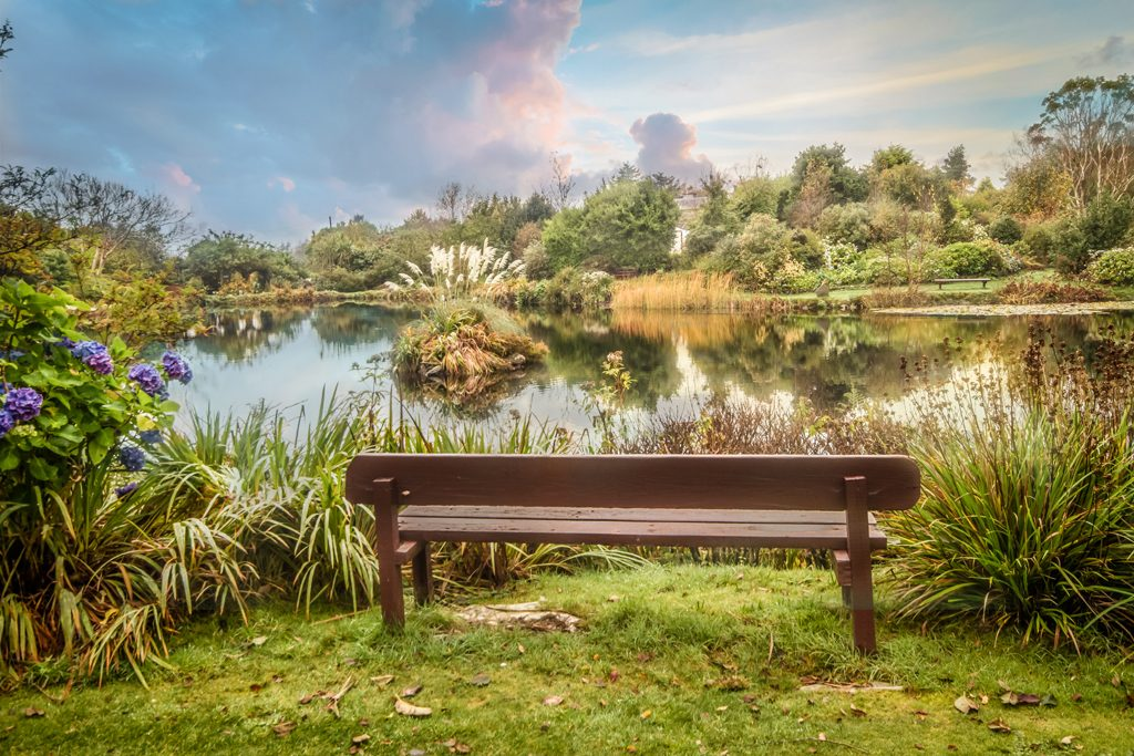 Seats to relax on at Glenwhan Gardens