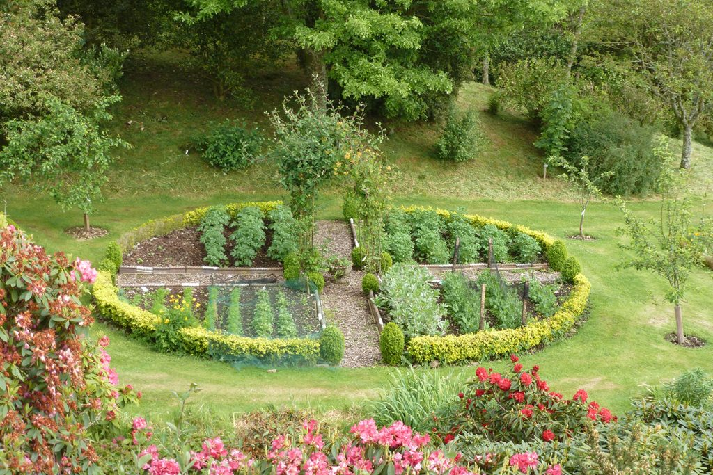 Grow our own vegetables and salads at Glenwhan Gardens Tearooms
