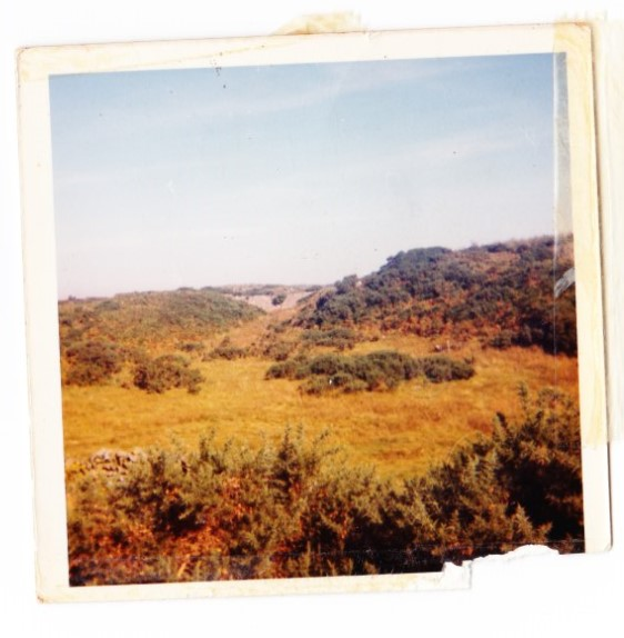 The Land in 1971 first seen at Glenwhan Gardens