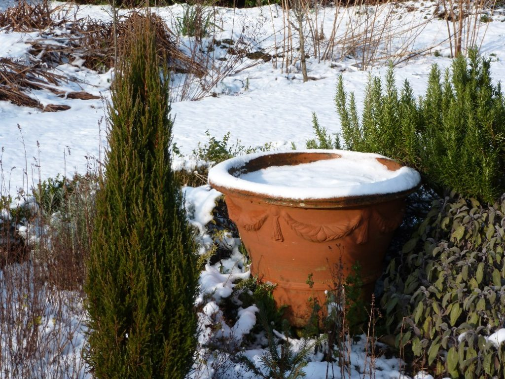 Winter in the Potager at Glenwhan Gardens